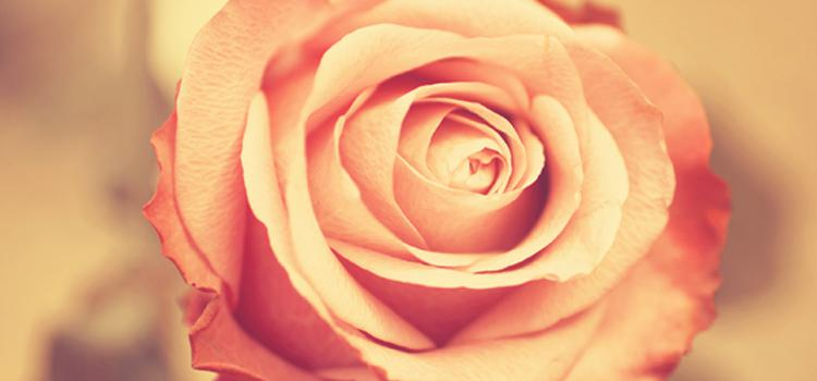 Kalb-i Nebî'nin Merhamet ve Rahmetle Doldurulması