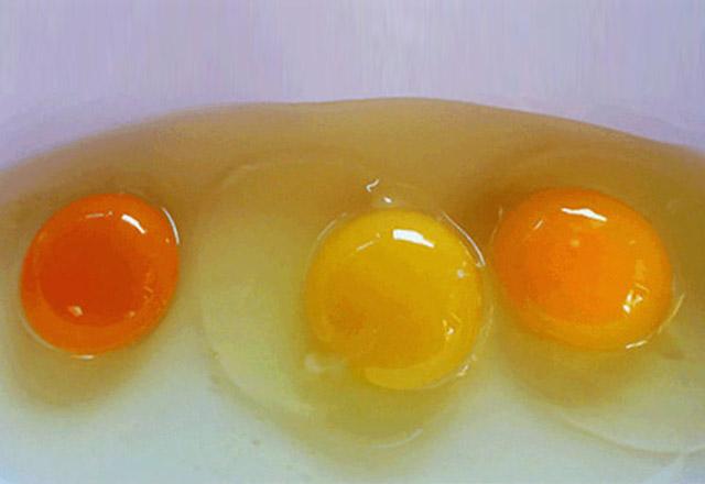 yumurtanin-sarisinin-rengi-neyin-habercisi--5522954