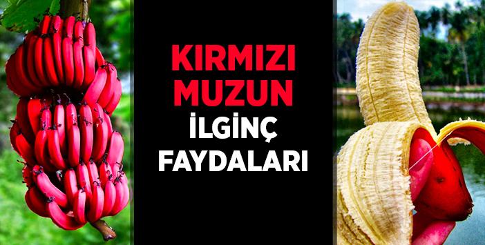 kirmizi_muz