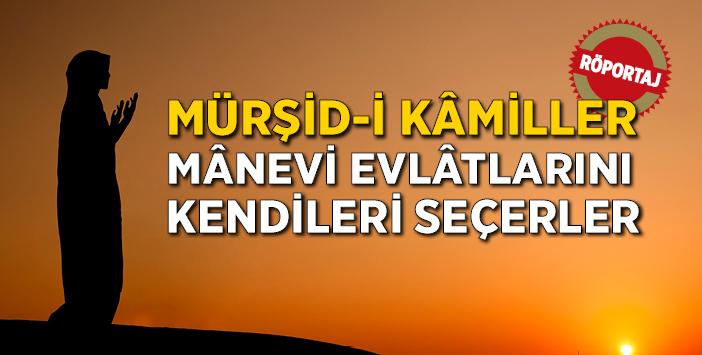 mursidi_kamiller