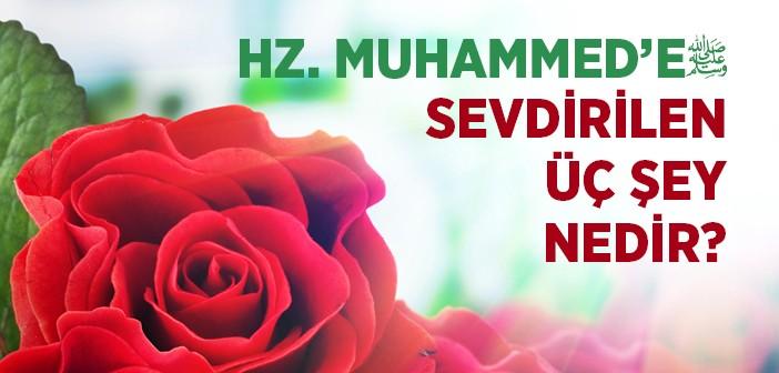 Hz. Muhammed'in (s.a.v.) Çok Evlilik Yapmasının Sebebi Nedir?