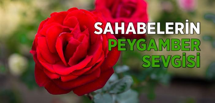 ASHAB-I KİRAM'IN PEYGAMBER SEVGİSİ
