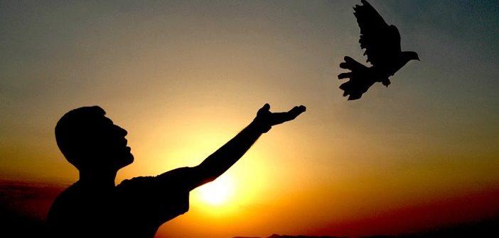 İNSANIN İRADESİ VE FİİLLERİNİN YARATILMASI