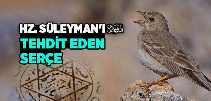Hz. Süleyman'ı (a.s) Tehdit Eden Serçe