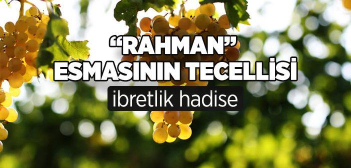 """""""RAHMAN"""" ESMASININ TECELLİSİ"""