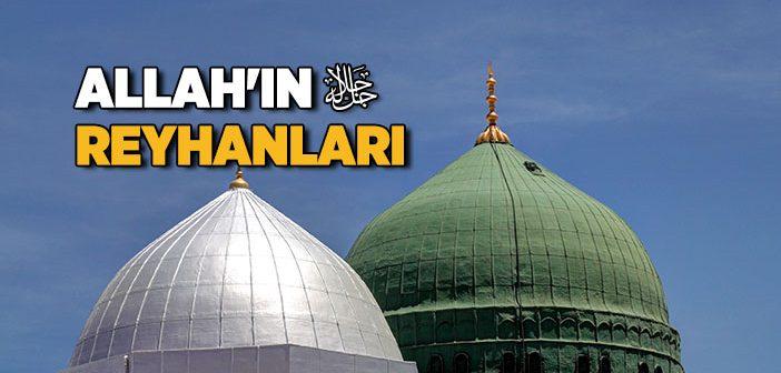 ALLAH'IN REYHANLARI
