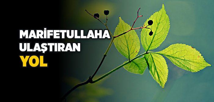 ALLAH'I NASIL BULURUM?