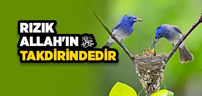 RIZIK ALLAH'TANDIR