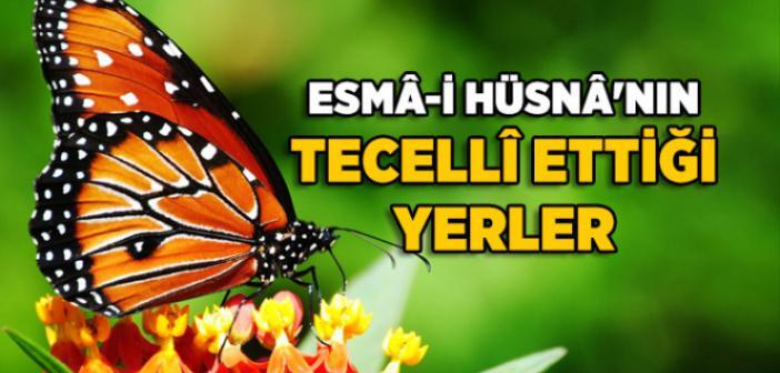 ESMAÜL HÜSNA'NIN TECELLİ ETTİĞİ YERLER