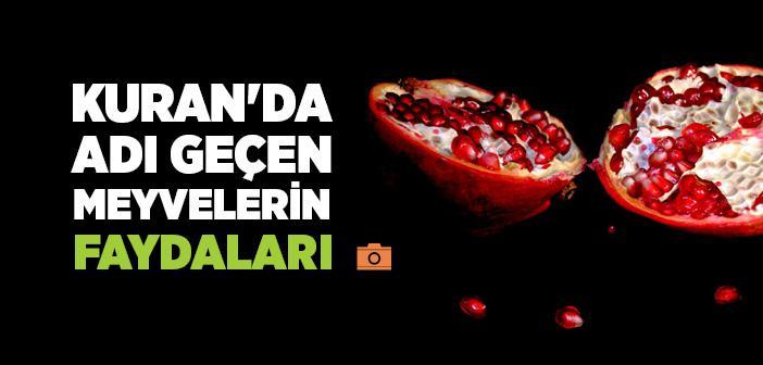Kuran'da Adı Geçen Meyvelerin Faydaları