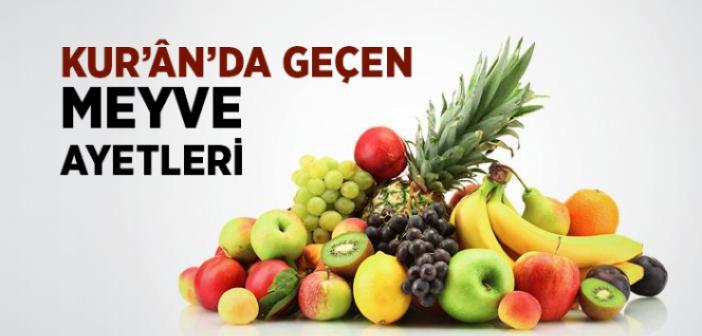 KUR'AN'DA MEYVELERLE İLGİLİ AYETLER