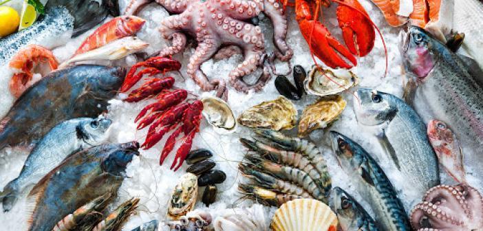 Deniz Ürünlerinin ve Hayvan Çiftliklerinin Zekâtı