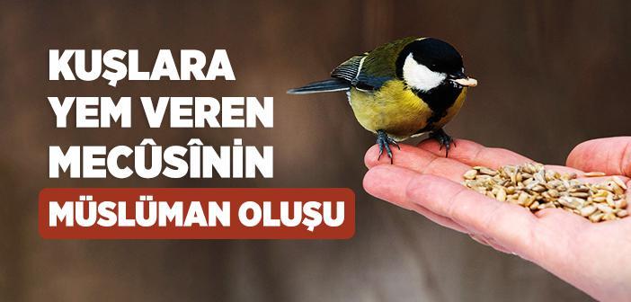 Kuşlara Yem Veren Mecûsînin Müslüman Oluşu