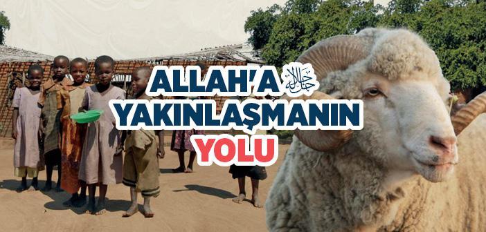 Allâh'a Yakınlaşmanın Yolu