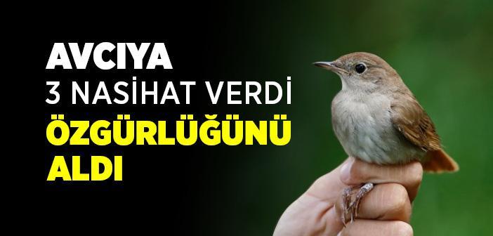 Kuşun Avcıya 3 Öğüdü
