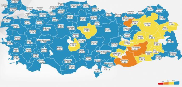 Türkiye'de 2 Doz Aşı Yaparak İki Doz 'Mavi Kategori'ye Giren İl Sayısı Yükseliyor
